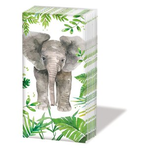 Tropical Elephant Tissues