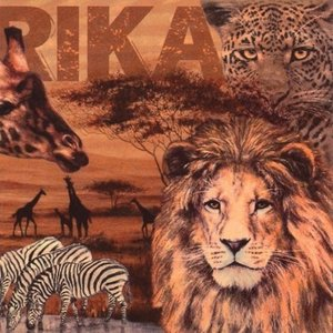 Africa Collage Napkin Set 33 x 33 cm