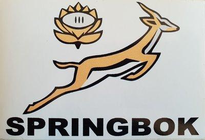 Springboks Sticker 11.5 x 7.0 cm
